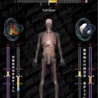 O1-276PE専用の画面(エネルギー療癒分析中の画面)