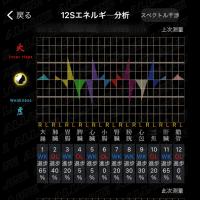 12Sエネルギー分析
