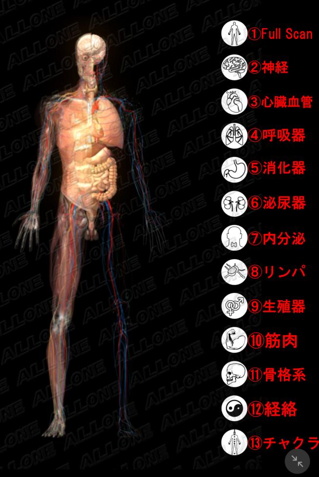 各器官分類